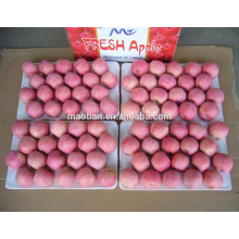fruta de manzana fresca para la venta