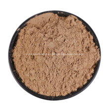 Polvo de materia prima de Sechium Edule Powder Chayote