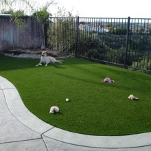 Fake Lawn for Landscaping