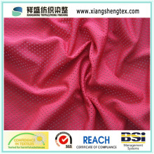 5X1 FDY Eyelet Mesh Fabric