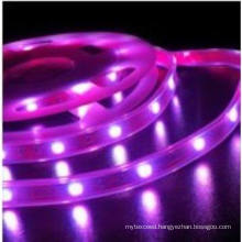 5050 flexible strips with solid cover tube waterproof (FLT01-5050WW30D-10MM-12V-WS)