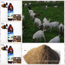 Algae Biobacterial Agent Used for Feed Additive