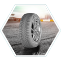 All Season Tire 225 / 45R17