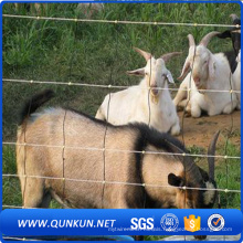 Cow Farm Guard Galvanized Cattle Fence ISO9001-2008