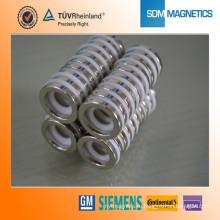 Профессиональные подгонянные оптовые высокотемпературные магниты N52