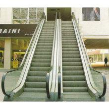 Escalera mecánica al aire libre de 30 grados