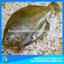 Flatfish em frutos do mar congelados