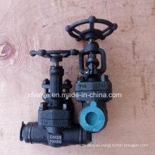 Válvula de globo forjado a presión de acero de alta presión A105 del estruendo DIN