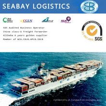 Frete marítimo / frete marítimo / contentor de expedição para a Beira, Maputo Moçambique