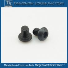 M6 * 8 En ISO DIN7380 Vis à tête bombée à six pans creux