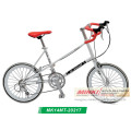 20 '' Cromoly Steel Road Bike