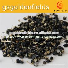 Negro goji Secado Goji negro nuevo cultivo negro goji