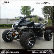Adult ATV EEC Legal on Street Hot Sale
