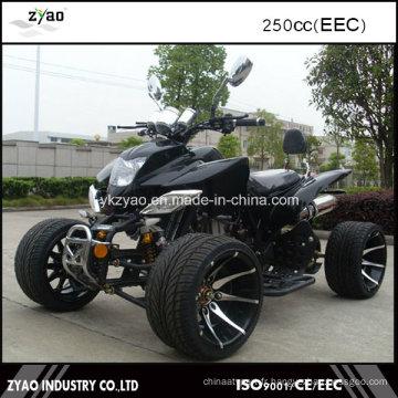 Adulte ATV EEC Legal sur Street Hot Sale