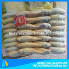 Marine Fresh Seafood Fish Yellow Croaker