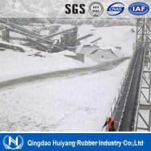 Correia transportadora resistente fria do sistema de manipulação de materiais da área fria