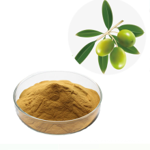 Manufacture Suuply Best Price Pure Natural Organic Oleuropein Olive Leaf Extract