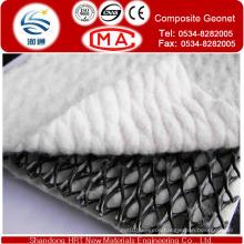 Export Geocomposite Drain/ Geocomposite Drainage Geonet/Tr-Dimension Composite Geonet for Drainage