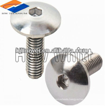 button headTitanium screws