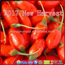 2017 New Arrival Nova Colheita Goji baga alimentos saudáveis frutas secas wolfberry orgânica