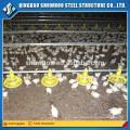 Bajo costo Prefab Chicken Shed Estructura De Acero Diseño De Granja Tipos De Casa De Aves De Corral