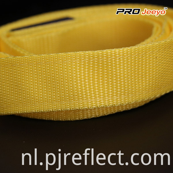High Visibility Safety Reflectivepets Leashessvp Zd004