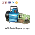 Tragbare Handölpumpe Pinion Pump Factory