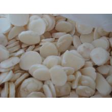 IQF frozen water chestnuts slice