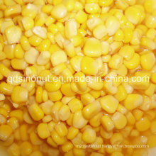 425g 340g Sweet Corn with High Quality Good Price (HACCP, HALAL, KOSHER, BRC, FDA)