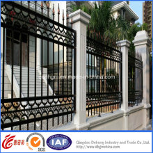 Ornamental Wrought Iron Farm Fence/Fencing