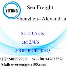 Shenzhen Port Sea Freight Shipping To Alexandria