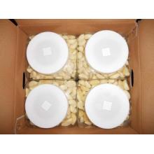Normal or Pure White Garlic Peeled Garlic