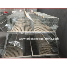 Galvanized rabbit cage manufacturer