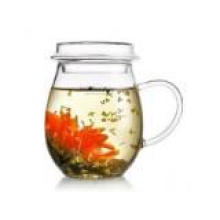Glass Craft Best Selling Glass Pot for Tea, Coffee, Water in 400ml