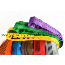 Round Sling 100% Polyester Sling