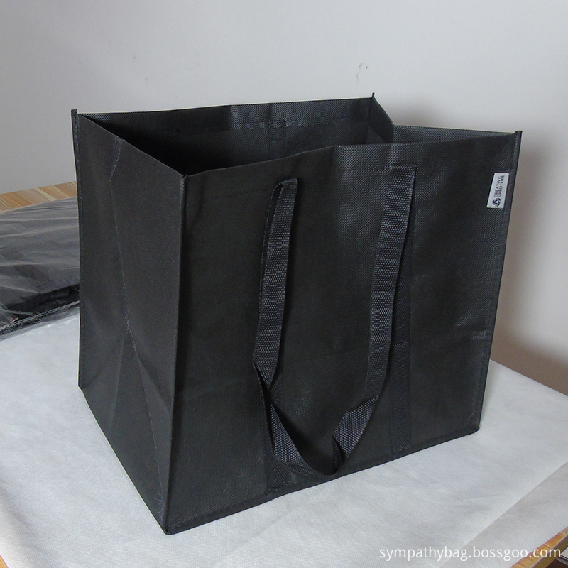large non woven bag