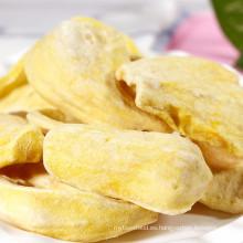 Comercio al por mayor FD comida saludable snack liofilizado jackfruit
