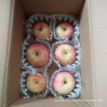 Bolso del mensajero para el bolso de empaquetado de manzana FUJI
