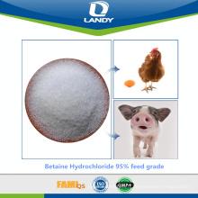 Chlorhydrate de bétaïne 95% d'alimentation