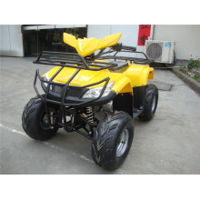 New Cheap 110cc ATV Plastic Body