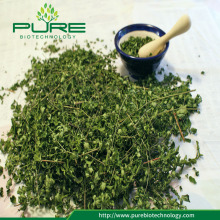 Raw Dried Moringa Leaves in Bulk