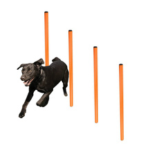 OEM Supplier for Dog Collar,Dog Bowl,Dog Clean Massage Glove,Dog Whistle Manufacturer in China Dog Agility Training Spikes Secured 4 Weave Poles supply to Indonesia Wholesale