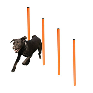 Dog Agility Training Spikes Secured 4 Weave Poles