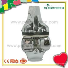 pH03-047 Knee model