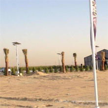 Project in Saudi Arabia Solar Street Light