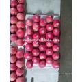 Свежие Красные Яблоки Фуджи