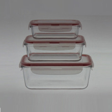Borosilicate Glass Food Container S/3 Rectangle