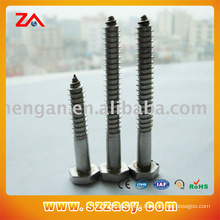 DIN7981 Series M6 Stainless Steel Screw
