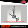 Genuine intake exhaust valve 3685996 3686661 for diesel engine isz13 qsz13 isx15 qsx15