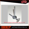 Válvula de exaustão genuína da entrada 3685996 3686661 para o motor diesel isz13 qsz13 isx15 qsx15